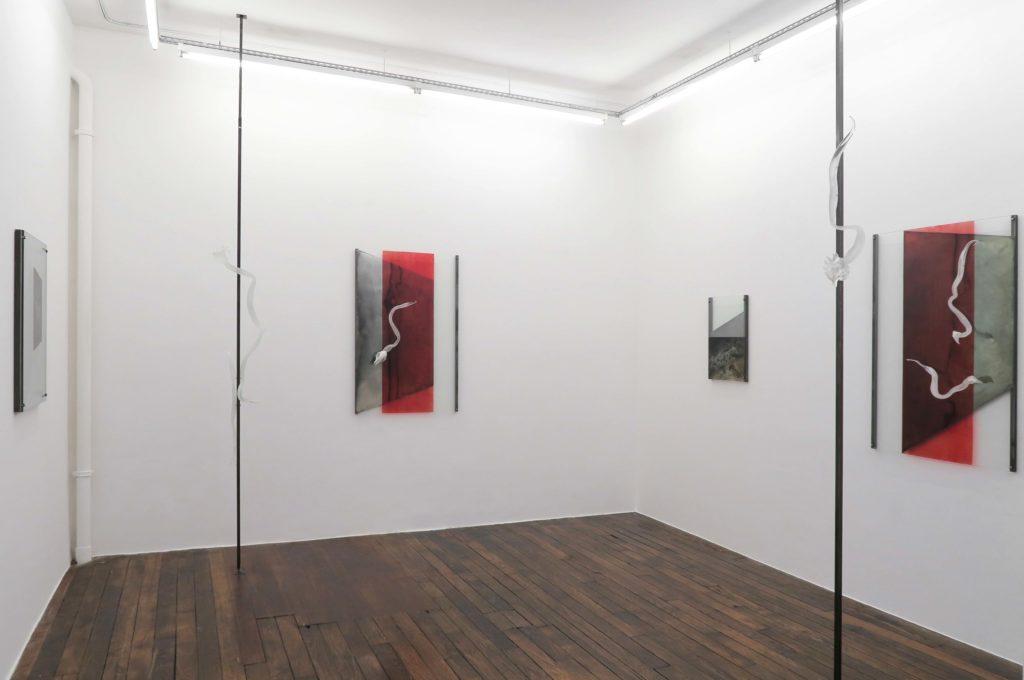 01_RondeSaleil_ŒilSauvage_GalerieValeriaCetraro
